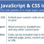 Custom JavaScript & CSS