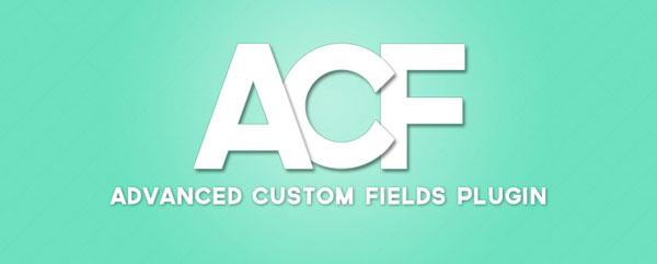 advanced custom field